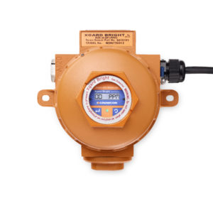 Xgard Bright gas detection